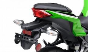 Kawasaki 300 Ninja 1