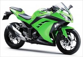 Kawasaki 300 Ninja 14