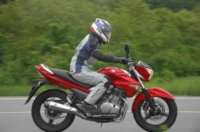 Suzuki Inazuma 250 14